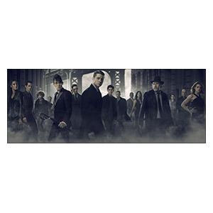 Неформатный постер Gotham. Размер: 80 х 30 см